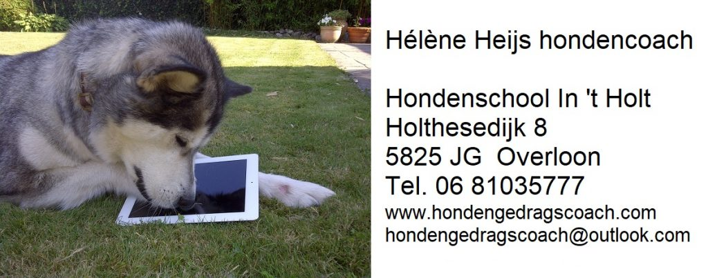 Hondencoach Hélène hondenschool Overloon