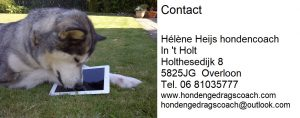 Hondencoach Hélène hondenschool In t Holt Overloon contact